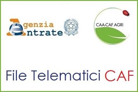 File Telematici CAF